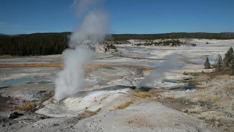 Porcelain Basin Yellowstone P HD 2519 Footage