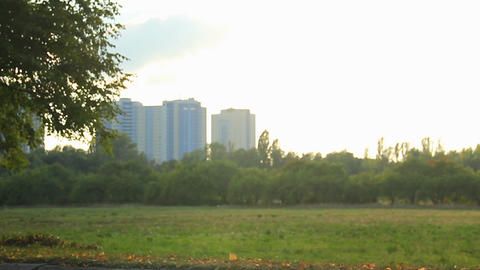 Young man with fit body jogging in city park in the morning, healthy lifestyle Footage