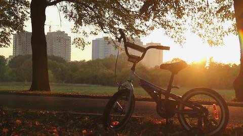 Nostalgic memories about happy carefree childhood, children's bike left in park Footage