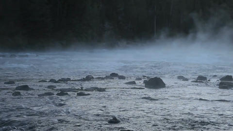 River misty forest P HD 2538 Footage