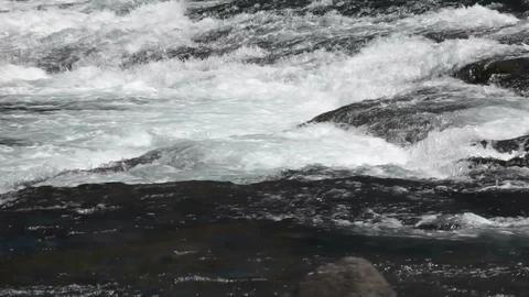 River rapids pan P HD 2650 Live Action