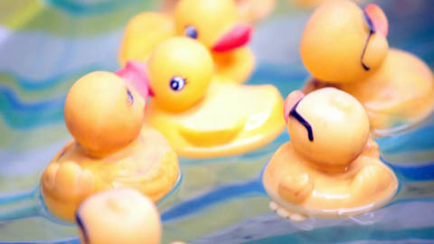 Rubber ducks moving P HD 1165 Live Action