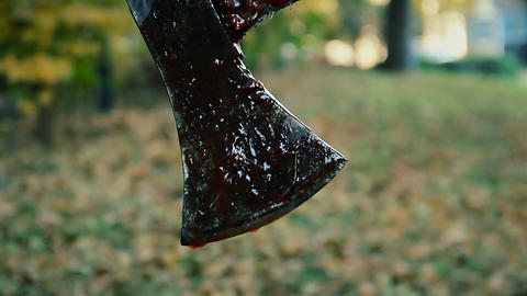 Blood dripping down sharp axe, animal slaughter house, crazy murderer's weapon Live Action