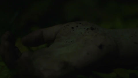 Hand of dead person on ground in dark forest, murderer drops victim's corpse Footage