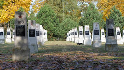 Soviet soldiers graveyard who died in world war II. Autumn Acción en vivo