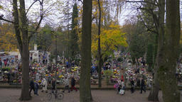 Poland. People are visiting cemetery at All Saints' Day at dusk Acción en vivo