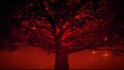 Orange Magic Tree by Night VJ Loop Motion Background Animation