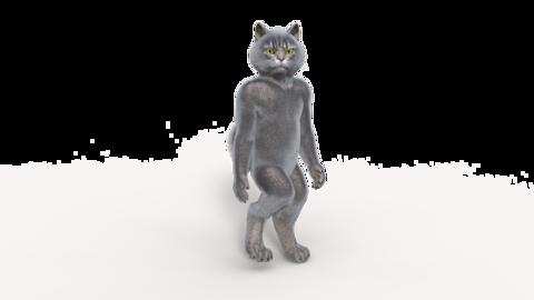 3D model gray cat steps, transparent background, animation,loop Live Action