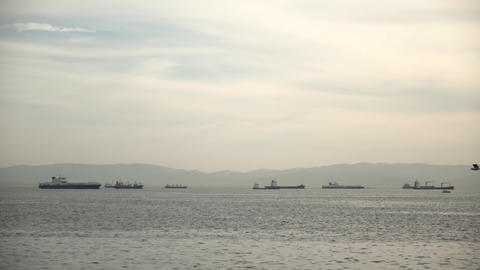 cargo ships waiting on the sea horizon Live Action