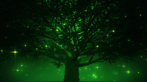 Green Magic Tree by Night VJ Loop Motion Background Animation