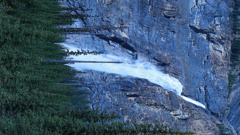 Takakkaw Falls forest vertical P HD 7410 Footage