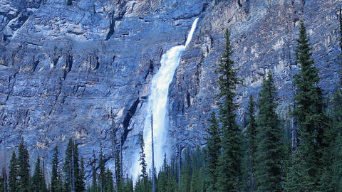 Takakkaw Falls Forest P HD 7407 Footage