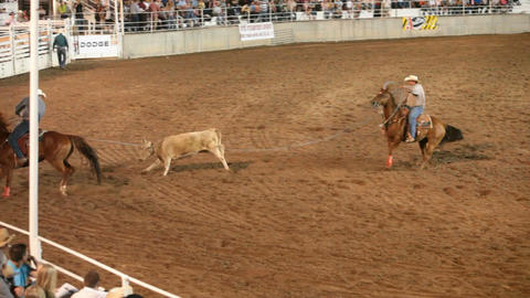 Team roping rodeo winner P HD 1114 Footage