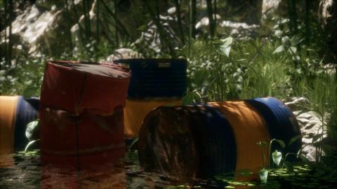 Rusty barrels in green forest ライブ動画