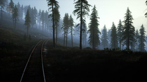National Forest Recreation Area and the fog with railway Live Action