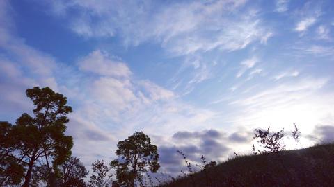 早朝の空 ライブ動画