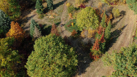 Aerial shot of two pensioners grandparents walking along a path among the trees Live Action