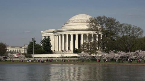 Washington DC Jefferson Monument cherry blossom tourist walk 4K 069 Footage