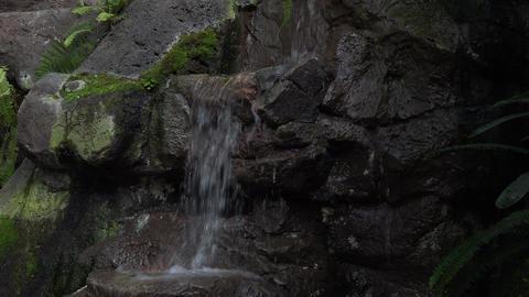 Washington DC National Botanical Garden waterfall 4K 046 Footage