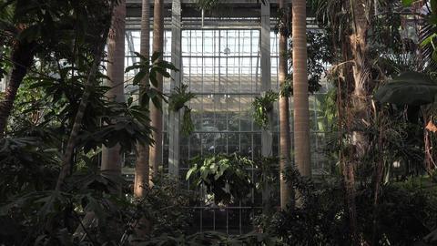 Washington DC National Botanical Garden 4K 045 Footage