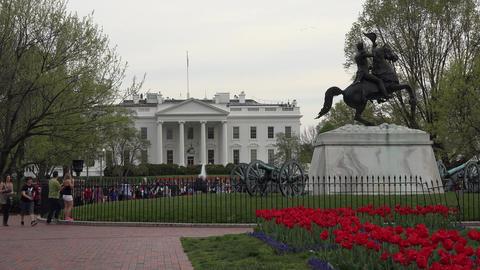 Washington DC White House tourists park flowers 4K Live Action