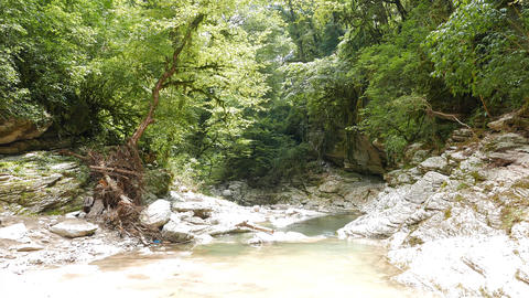 The riverbed Psakho, Sochi, Russia Footage