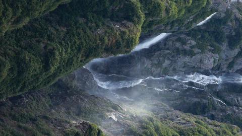 Waterfall rainforest Alaska vertical P HD 0177 Footage