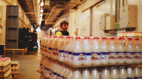 mover pulls hydraulic truck with milk bottles in warehouse Live Action