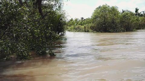 Mekong River in Vietnam, South East Asia 4k Acción en vivo