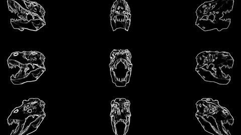 T-Rex Skull Loop 05 Videos animados