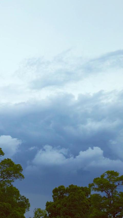 Cloudy sky_portrait Live Action
