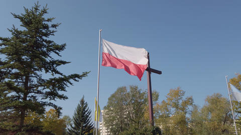 Polish flag on the background of the cross Live Action