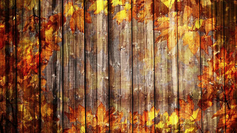 Autumn Background Animation