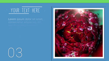 Multipurpose Colorful Slideshow After Effects Project