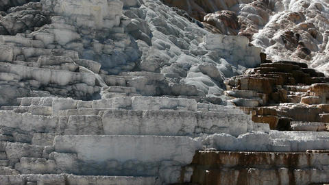 Yellowstone Mammoth Terraces close P HD 2468 Live Action