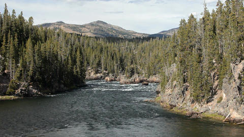 Yellowstone River down stream P HD 2384 Footage