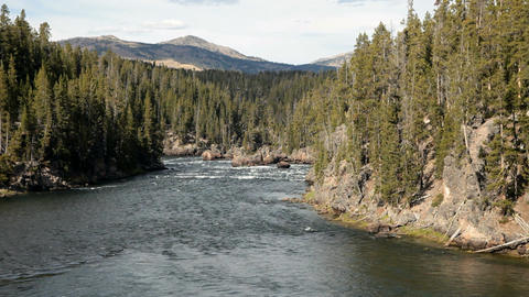Yellowstone River rapids P HD 2387 Footage