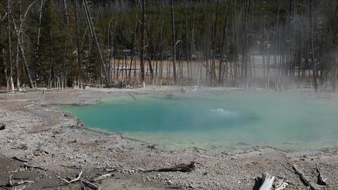 Yellowstone hot geyser pool P HD 2511 Footage