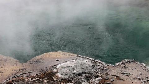 Yellowstone hot pot shore P HD 2489 Footage