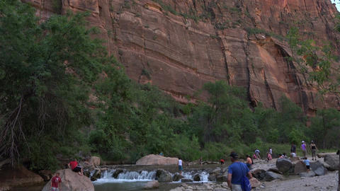 Zions National Park river tilt to cliffs 4K Footage