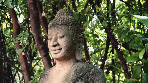 Buddha Statue In The Phnom Penh, Cambodia, Asia Live Action
