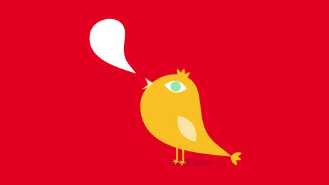 wild bird singing with speech bubble forming on its open beak with shine on one eye and crest made Animation