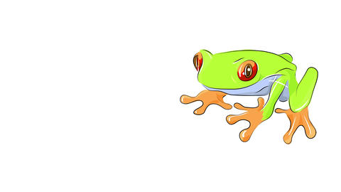 small red eye frog isolated on one corner of the screen suggesting it is hard to catch it for a Animation