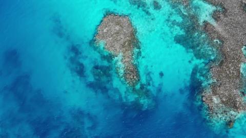 石垣島の秘境「浦崎」サンゴ礁の青い海とさざ波、俯瞰・前進 ライブ動画