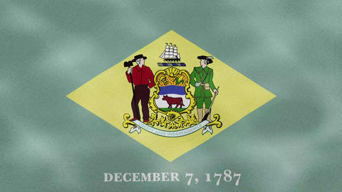 Delaware dense flag fabric wavers, background loop Animation