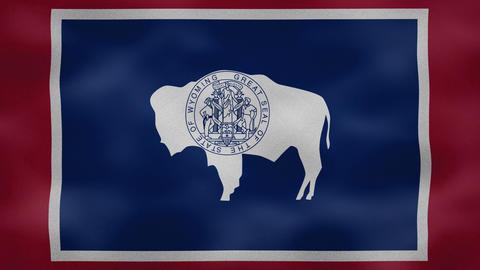 Wyoming dense flag fabric wavers, background loop Animation
