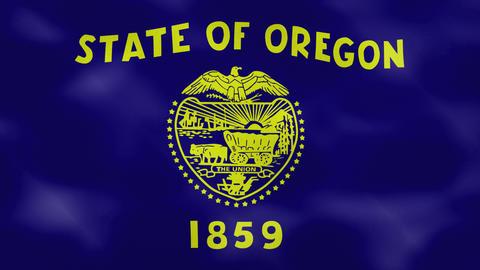 Oregon dense flag fabric wavers, background loop Animation