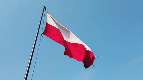 Polish flag, wind and blue sky Live Action
