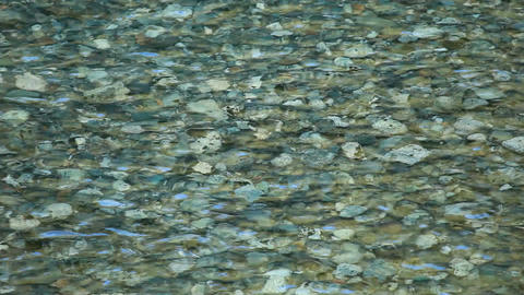 river water clear gravel P HD 0245 Footage
