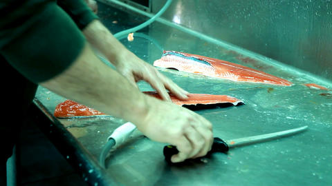 salmon cutting fillets P HD 8173 Footage